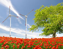 Red poppy field with wind turbine Royalty Free Stock Images