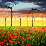 Red poppy field and wind turbines Stock Photos