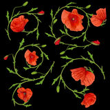 Red poppy flower ornament elements collection on black Stock Photo