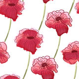Red poppy flower. Vector watercolor seamless floral pattern back Stock Photos