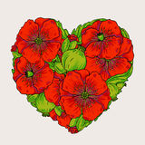 Red poppy flowers heart illustration Stock Photos