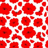 Red poppy flowers isolated on white background seamless pattern stock illustration