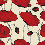 Red poppy flowers  pattern Stock Images