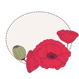 Red poppy flowers retro frame Stock Images