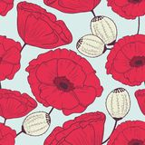 Red poppy flowers seamless pattern Stock Photography