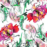 Red poppy , image,  watercolor pattern seamless Royalty Free Stock Photography