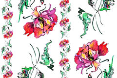 Red poppy , image,  watercolor pattern seamless, strip Stock Photography