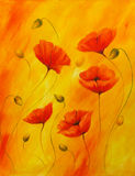 Red poppy on orange background. Red poppies.  Stock Photo
