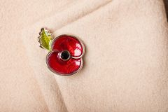 Red Poppy Pin as a Symbol of Remembrance Day Royalty Free Stock Photo