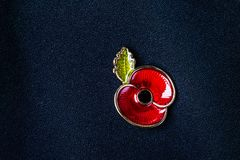 Red Poppy Pin as a Symbol of Remembrance Day Stock Images