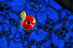 Red Poppy Pin as a Symbol of Remembrance Day Stock Photography