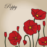 Red poppy sketch 2 Stock Image