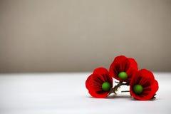 Red Popy Flowers Stock Photo