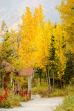 Red Porch Yellow Leaves Autumn Fall Season Alaska Royalty Free Stock Photography