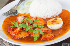 Red pork with rice barbecued red pork in sauce with rice Royalty Free Stock Images