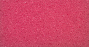 Red porous texture. The texture of the sponge Stock Image