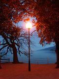 Red post lamp. Red lamp in the late evening Stock Photos