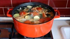 Red pot with boiling vegetable soup. stock video