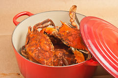 Red pot full of colossal chesapeake blue claw crabs Royalty Free Stock Photography