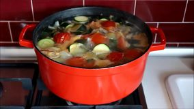 Red pot with boiling vegetable soup stock video