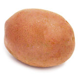 Red potato Stock Image