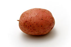 Red potato. Isolated on white background Royalty Free Stock Image