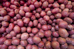 Red potatoes. Piled one of top of the other at a farm stand Royalty Free Stock Photo