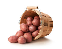 Red Potatoes in a Basket Royalty Free Stock Photo