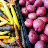Red potatoes and colorful carrots Stock Photo