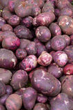 Red potatoes on display Stock Images