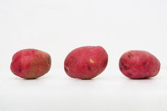 Red Potatoes isolated on a white background Stock Images