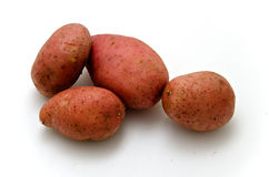 Red potatoes. Isolated on white background Royalty Free Stock Photos