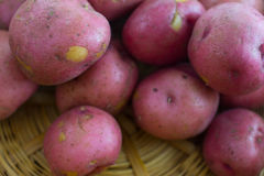 Red Potatoes. Macro image of red potatoes in a basket Stock Photos