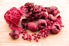 Red potpourri Stock Image