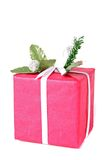 Red present Stock Image