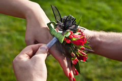 Red Prom Corsage Stock Photography