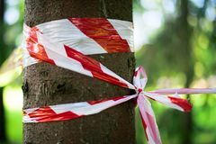 Red protective tape on the tree stock photos