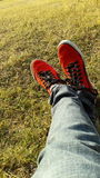 Red Puma shoes with grass HD wallpaper Stock Photography