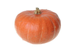 Red Pumpkin Royalty Free Stock Photo
