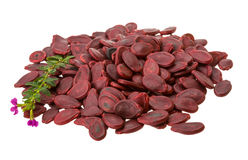 Red Pumpkin seeds Royalty Free Stock Image