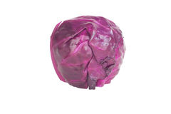 Red or Purple Cabbage Isolated On White Background. Royalty Free Stock Photo