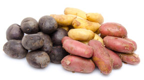Red, purple and new potatoes Royalty Free Stock Images
