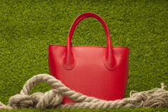 Red purse on green grass Royalty Free Stock Image