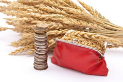 Red purse with wheat ears Stock Photography
