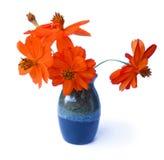 Red purslane in ceramic vase. photo manipulation oil paint illus Royalty Free Stock Photography