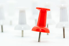 Red Push pin in front and white push pins at back Royalty Free Stock Photography