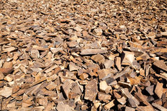 Red Quartzite Rocks Talus Slope Stock Image