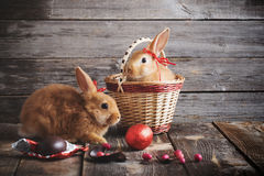 Red rabbits with chocolate eggs. On wooden background Stock Images