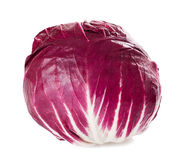 Red radicchio Royalty Free Stock Photography