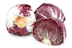 Red radicchio cabbage Royalty Free Stock Image